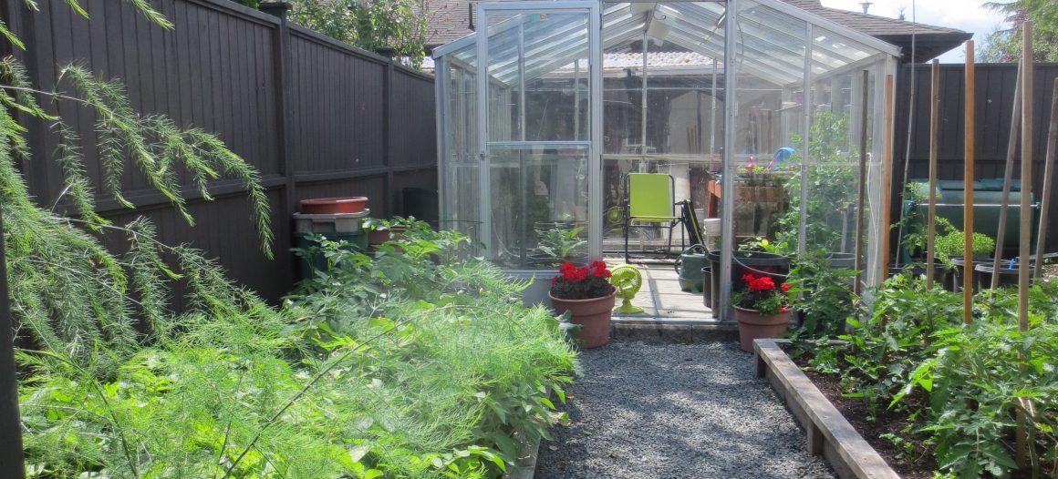 Growing Strawberries in Gutters (Update) – My West Coast Garden